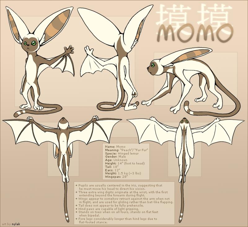 Blueprints momo de la avatar la leyenda de aang avatar momo