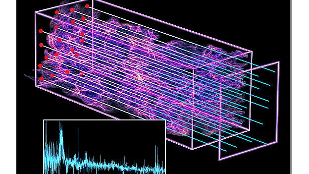 Los cientificos elaboraron un mapa en 3d de nubes de hidrogeno en el espacio-la-luz-de-los-cuasares.jpg
