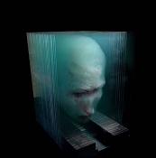 Obras 3D pintadas a mano sobre cristal-xia-xiaowan_112.jpg