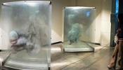 Obras 3D pintadas a mano sobre cristal-xia-xiaowan_5.jpg
