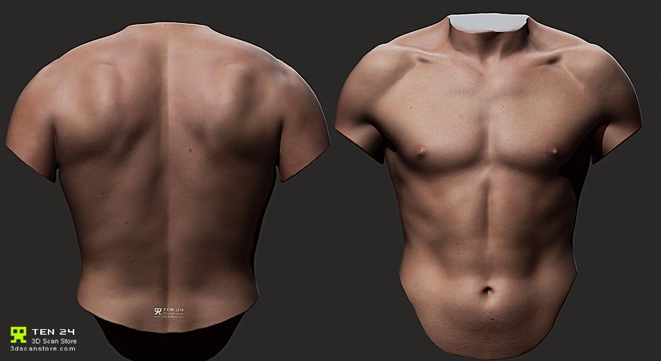 Torso masculino en alta resolucion-torso-gratuito-zbrush.jpg