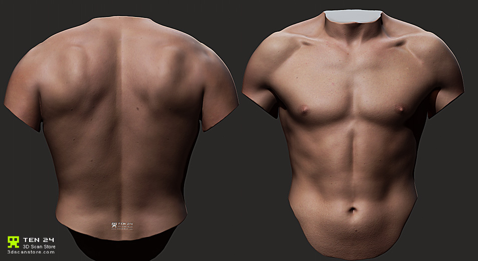 ZBrush] Torso masculino en alta resolución