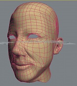 cabeza-1wire.jpg