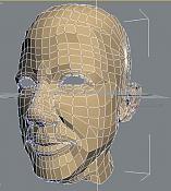 cabeza-1wire2.jpg