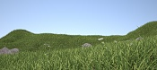 Scene with Maxwell Grass-final002_maxwell-grass_17-min-2000x900-mod.jpg