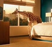 The mill visual effect studio showreel animales y criaturas 2012-image-demoreel-the-mill-visual-effect-studio.jpg