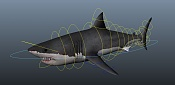 Great white shark and the seal - WIP-shark_rigging.jpg
