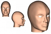 Cabeza femenina  de Uma Thurman en progreso-muestra_uma.jpg