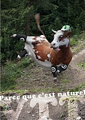 Vacas locas-afiche_vtt.jpg
