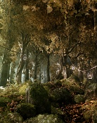 Un bosque en mi casa-framec.jpg