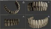 Cabeza humana-piezasdentales.jpg