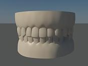 Cabeza humana-dientes02.jpg
