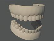 Cabeza humana-dientes03.jpg