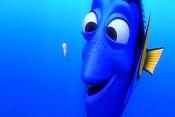 Finding Dory  Finding Nemo 2 -finding-nemo-dory-squishy.jpg