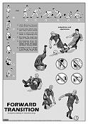 Ilustraciones-forward-transition.jpg