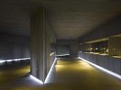 ayuda con iluminacion   lineal brillante  -museum-of-america-ensamble-studio-salamanca-spain-02.jpg