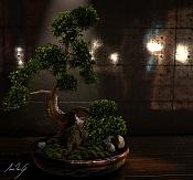 Bonsai-bonsai.jpeg