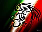 hola a todos soy nuevo-400_1220890938_banderamexico3_zpsa67c6916.jpg
