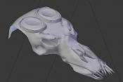 Sugerencias para mejorar la malla-crani3.png