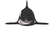 Orca-orca-2.png