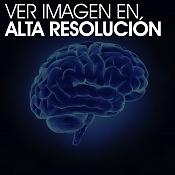 iluminacion sin sombras y con reflejos por todo el exterior del objeto-cerebro.jpg