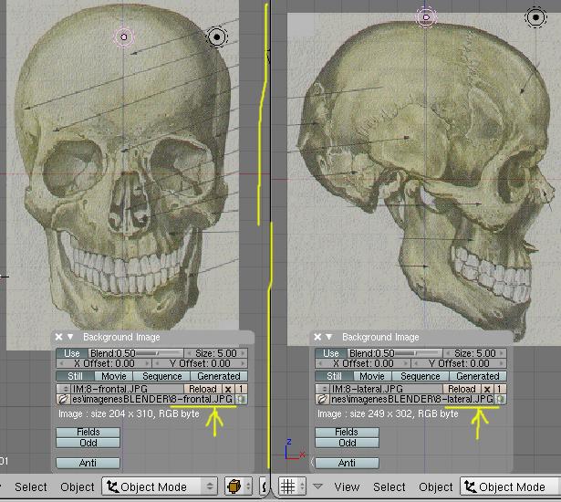 Como colocar una imagen de fondo para trabajar el objeto sobre ella-cargar06.jpg