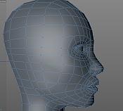 Topologia de la cara por que siempre asi-topo2.png