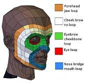 Topologia de la cara  Por que siempre asi -topologia-de-la-cara.jpg