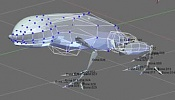 Crear esqueleto y modelar una rana-crear_esqueleto_y_modelar_una_rana_21.jpg