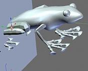 Crear esqueleto y modelar una rana-crear_esqueleto_y_modelar_una_rana_33.jpg