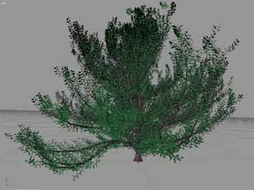 Modelado Organico de arboles y plantas en Blender-modelado-organico-de-arboles-y-plantas-en-blender_1.jpg