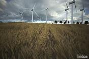 The Wind-imagen-1.jpg