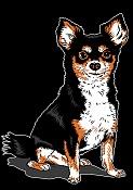 Ilustraciones-dogberniecolorsimulation.jpg