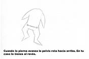 1ª actividad de animacion: Caminatas-pelvis.jpg