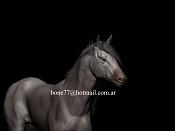 horse caballo-horse-3d.jpg