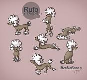 HerbieCans-rufo-caniche_by-herbiecans.jpg