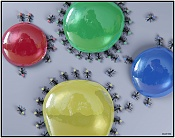 ants of colors-antscolors2.jpg