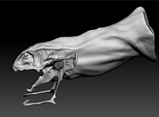 modelado criatura marina en proceso-006.jpg