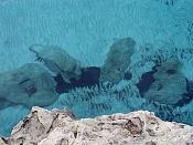 Fotos Naturaleza-agua.jpg