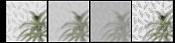 vidrio esmerilado con incrustaciones-14-prueba-vidrios.jpg