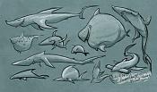 HerbieCans-31-7-14-herbiecans_sharks.jpg