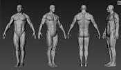 Estudio anatomico de Hombre y Mujer-captura.jpg