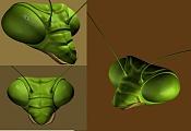 Mantis empezando-inicio-mantis02.jpg