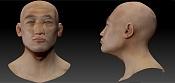 Estudio anatomia Facial / asiatico-reviewcraneoasian.jpg