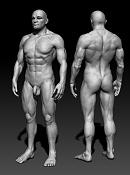 Anatomia-2views.jpg