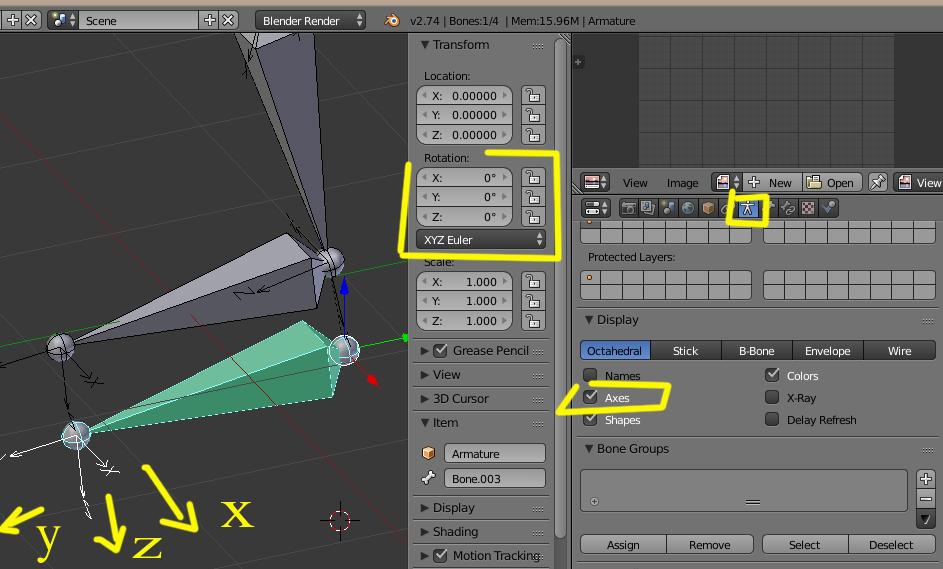 Copy rotation-huesos.jpg