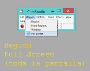 Open broadcaster software-cam_2.jpg