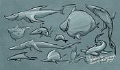 Herbiecans-31-7-14-herbiecans_sharkday.jpg