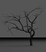 Invierno aislado-tree_test_10.jpg