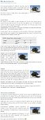 Guía Terragen 2 1-plantas-densas-terragen.png